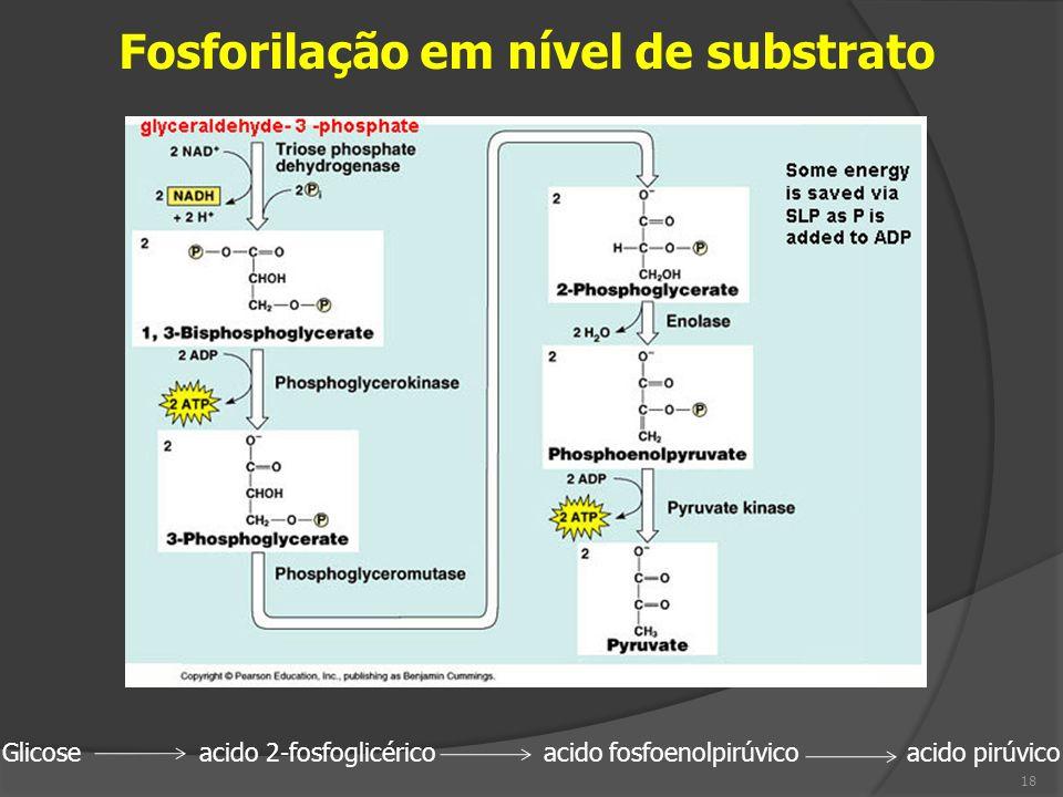 Fosforilação em nível de substrato