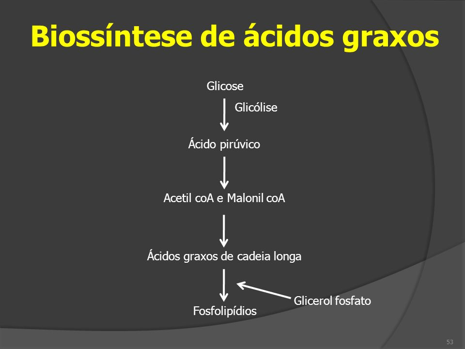 Biossíntese de ácidos graxos