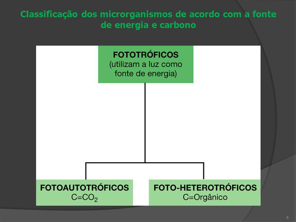 Classificação dos microrganismos de acordo com a fonte de energia e carbono
