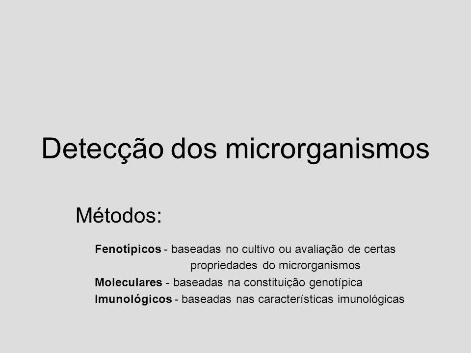 Detecção dos microrganismos