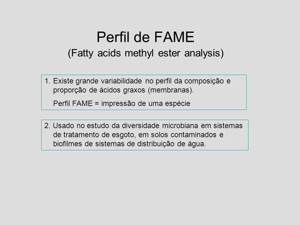 Perfil de FAME (Fatty acids methyl ester analysis)