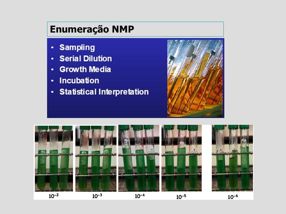 Enumeração NMP
