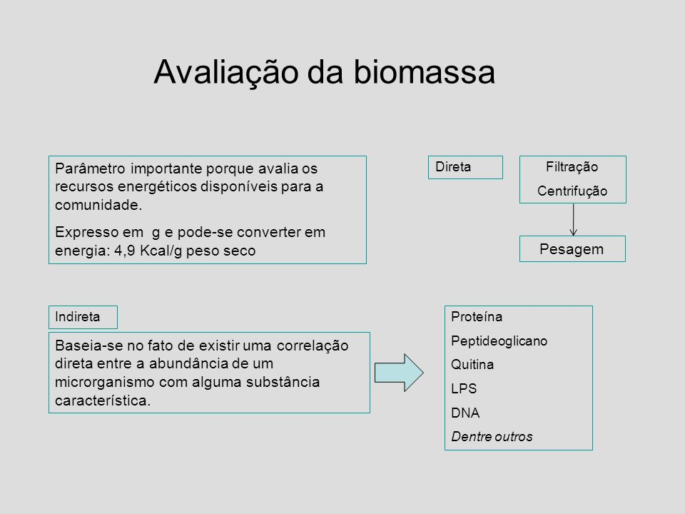 Avaliação da biomassa Parâmetro importante porque avalia os recursos energéticos disponíveis para a comunidade.