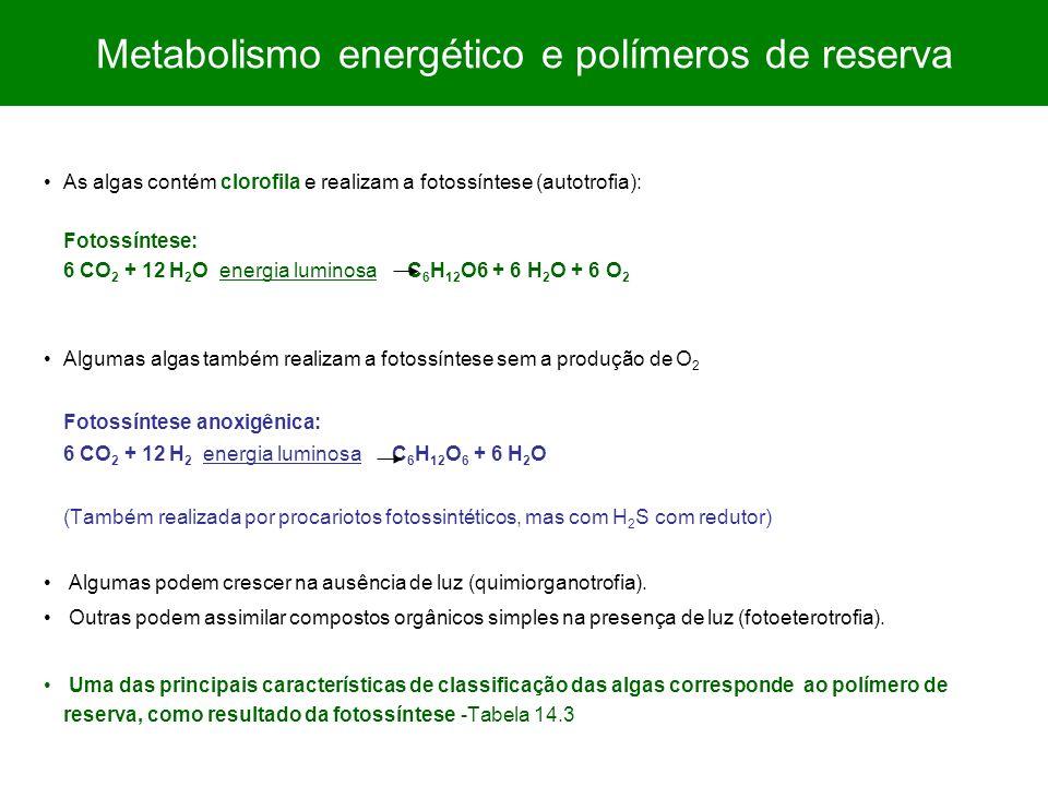 Metabolismo energético e polímeros de reserva