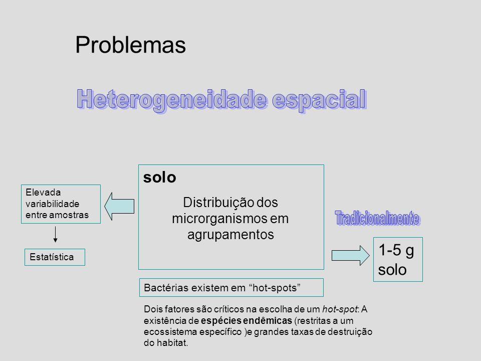 Problemas Heterogeneidade espacial solo 1-5 g solo