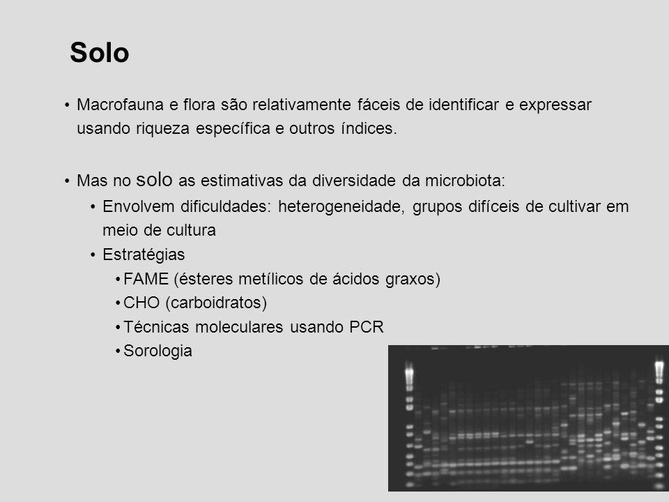 Solo Macrofauna e flora são relativamente fáceis de identificar e expressar usando riqueza específica e outros índices.