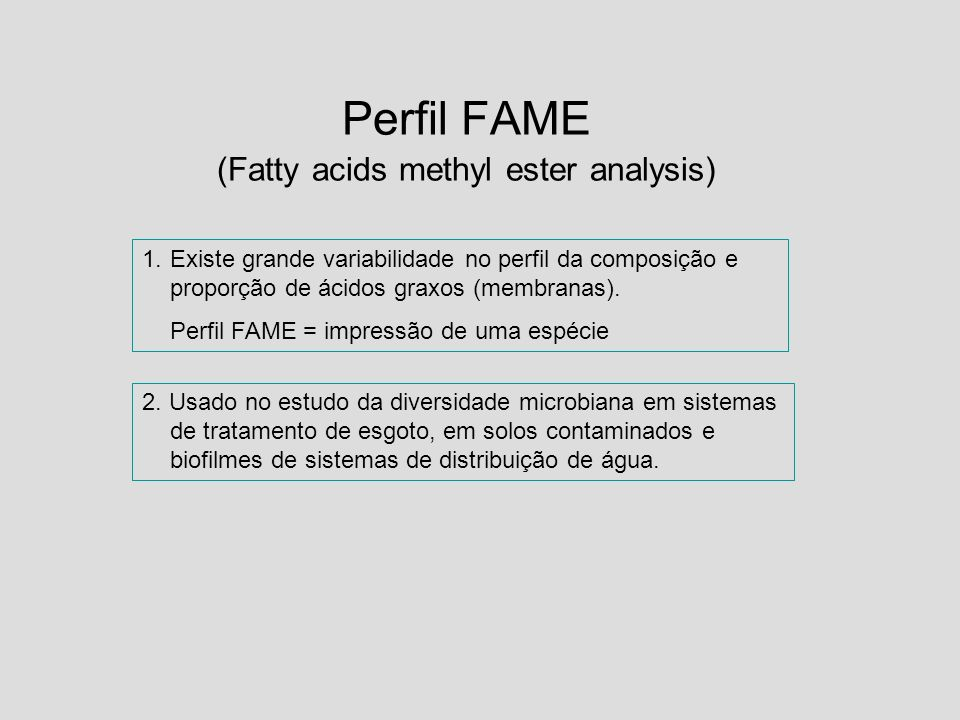Perfil FAME (Fatty acids methyl ester analysis)