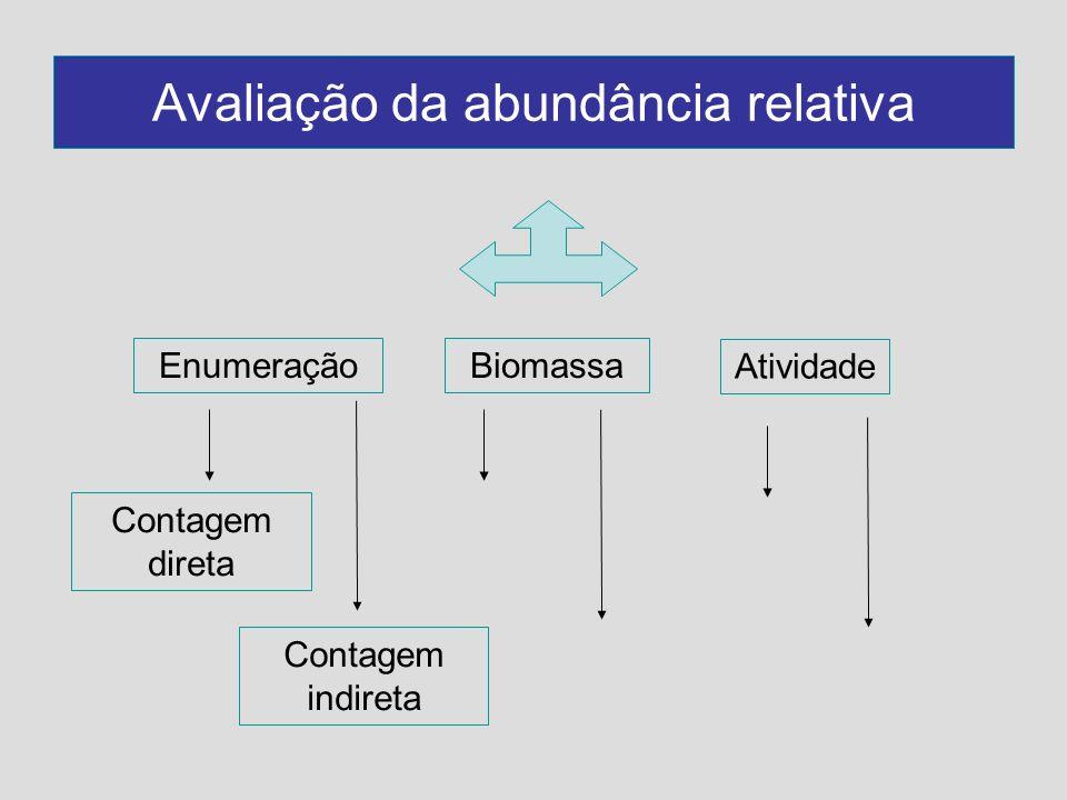 Avaliação da abundância relativa