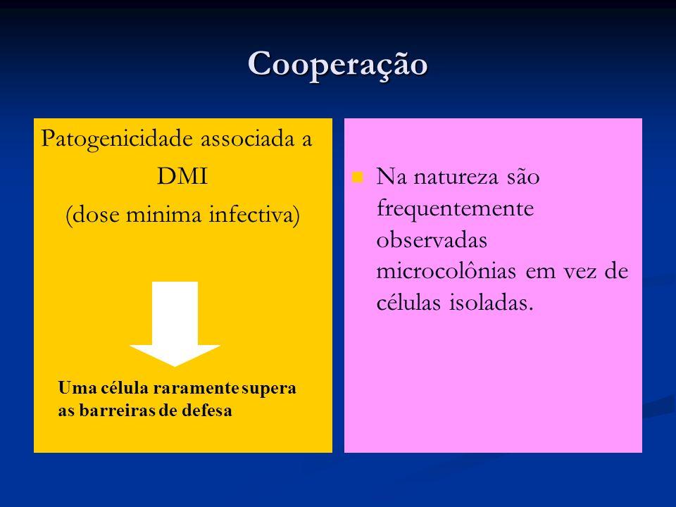 (dose minima infectiva)