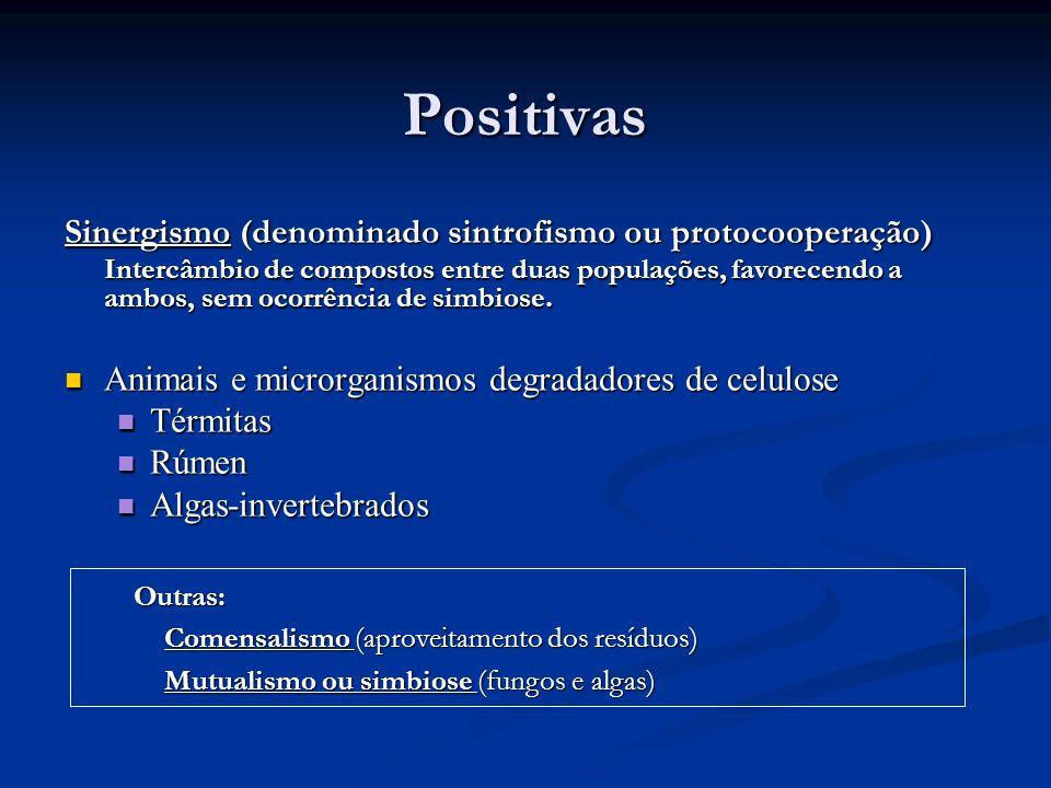 Positivas Sinergismo (denominado sintrofismo ou protocooperação)