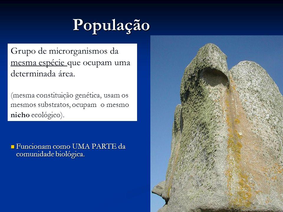 População Grupo de microrganismos da mesma espécie que ocupam uma determinada área.