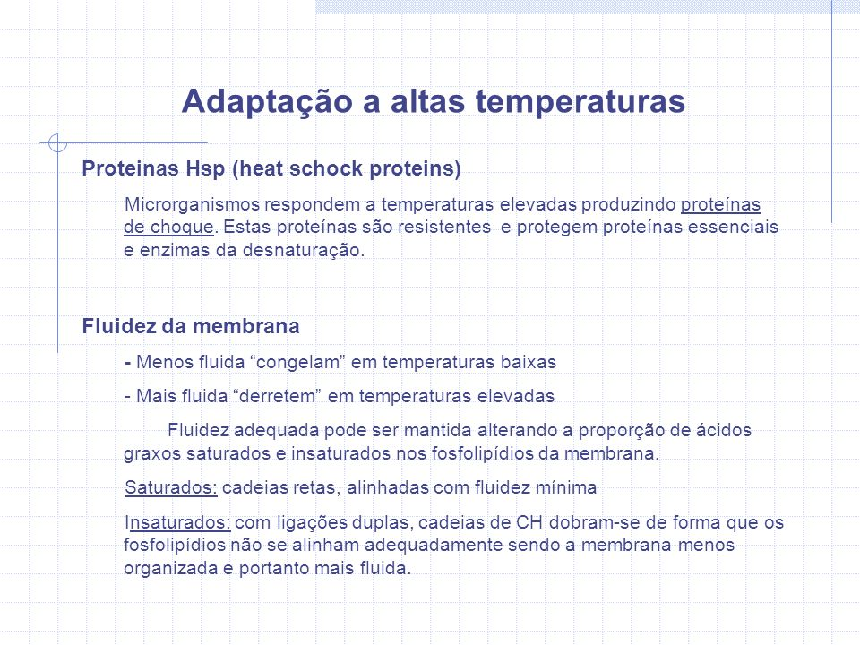 Adaptação a altas temperaturas