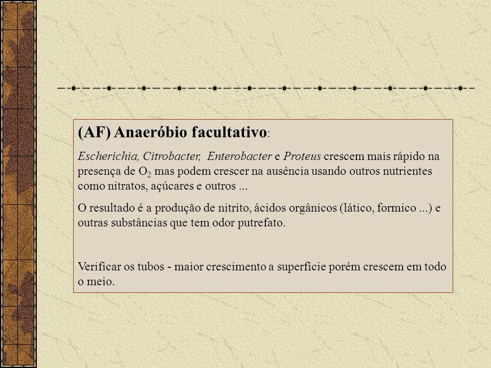(AF) Anaeróbio facultativo: