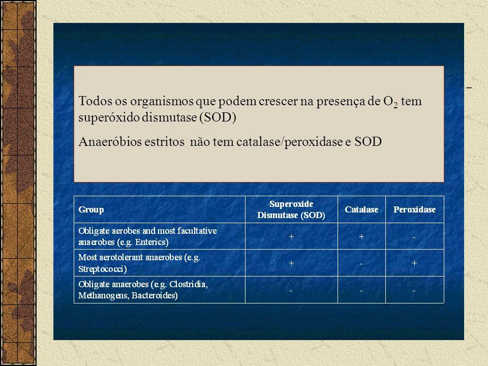 Todos os organismos que podem crescer na presença de O2 tem superóxido dismutase (SOD)