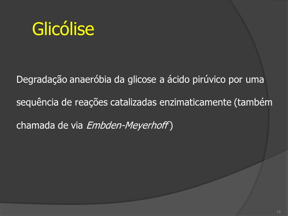 Glicólise Degradação anaeróbia da glicose a ácido pirúvico por uma