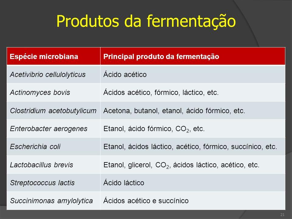Produtos da fermentação