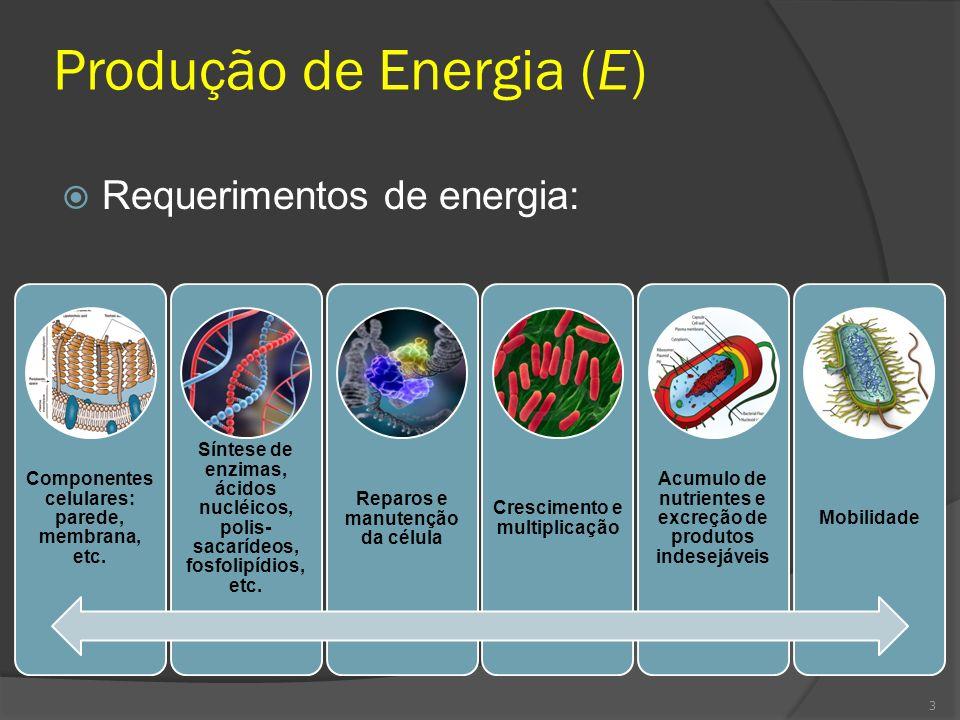 Produção de Energia (E)