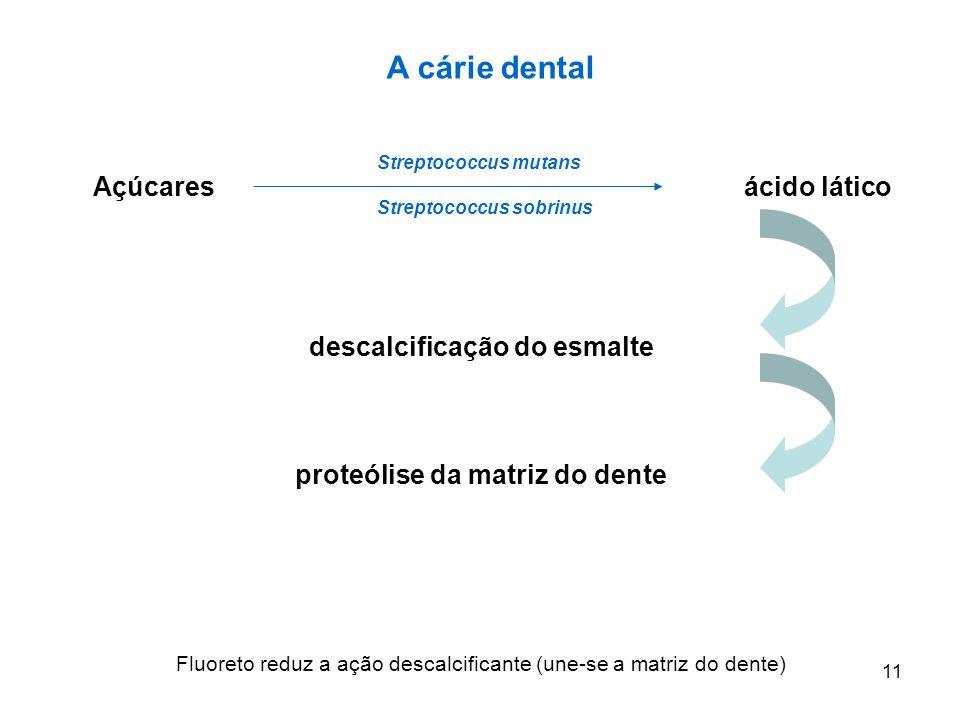 descalcificação do esmalte proteólise da matriz do dente