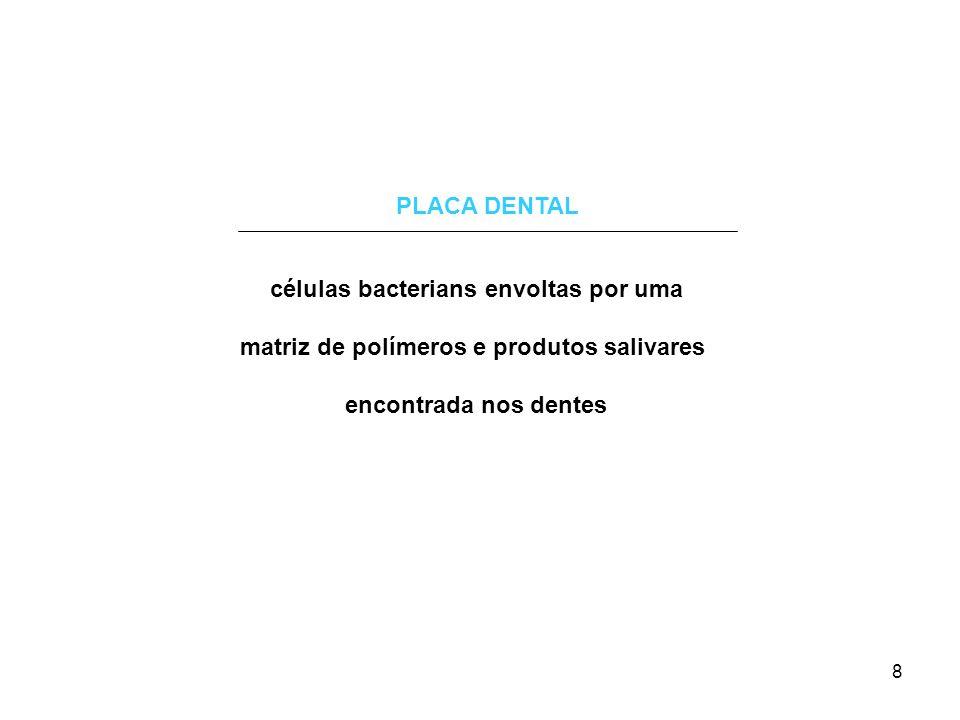células bacterians envoltas por uma