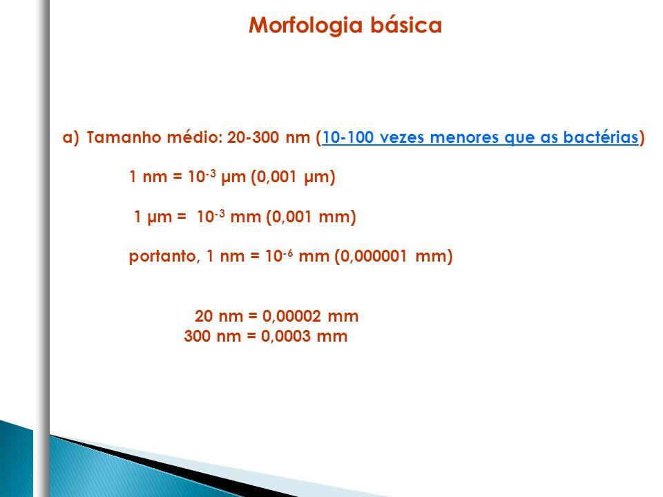 Morfologia básica Tamanho médio: 20-300 nm (10-100 vezes menores que as bactérias) 1 nm = 10-3 μm (0,001 μm)