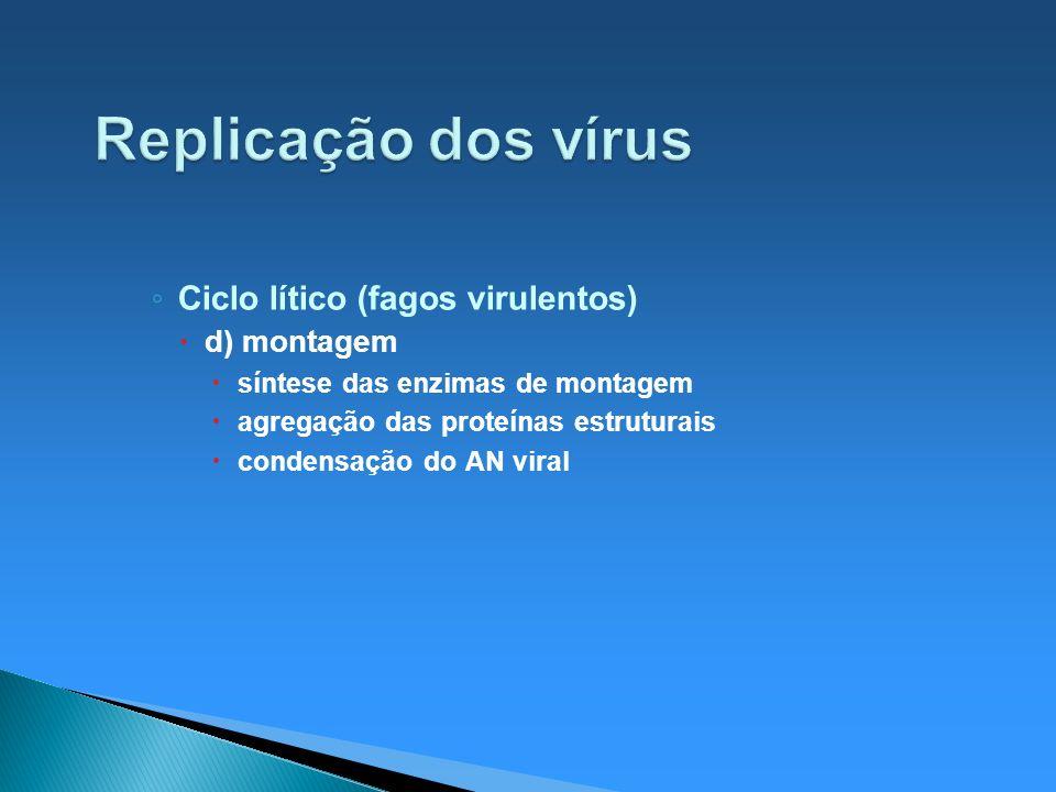 Replicação dos vírus Ciclo lítico (fagos virulentos) d) montagem