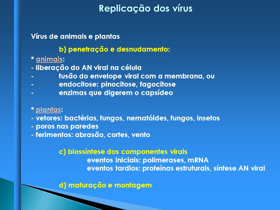Replicação dos vírus Vírus de animais e plantas