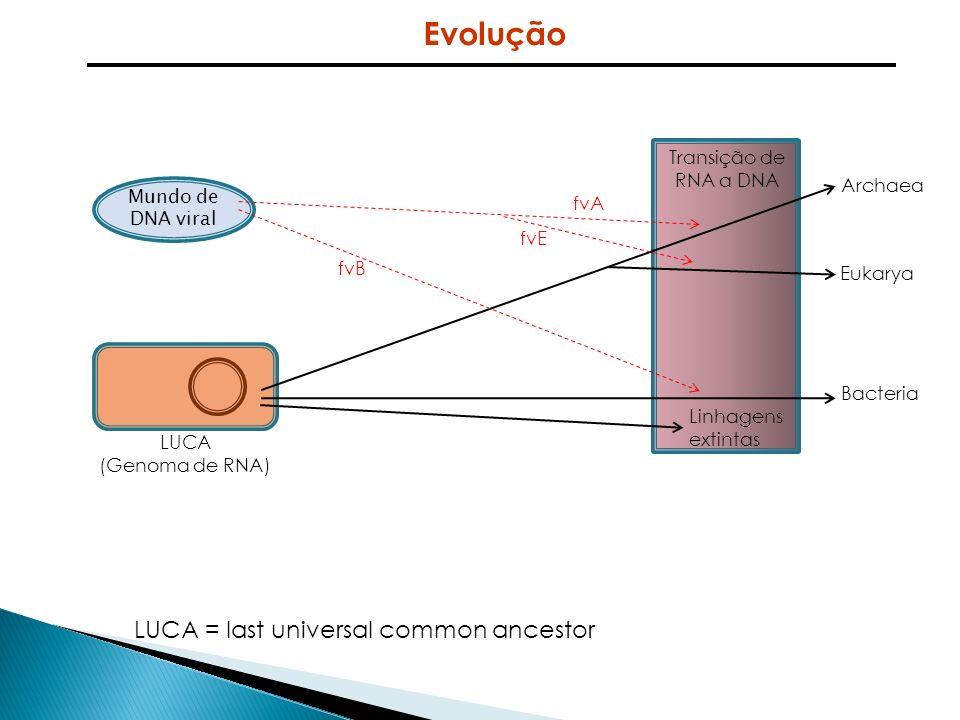 Evolução LUCA = last universal common ancestor Transição de RNA a DNA