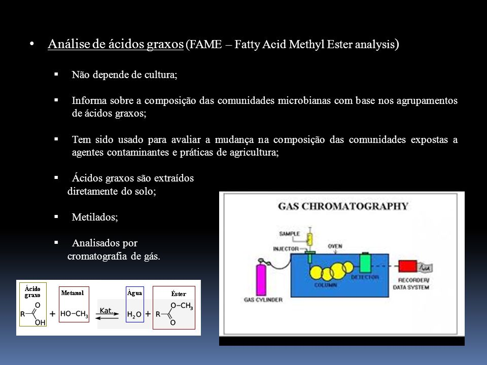 Análise de ácidos graxos (FAME – Fatty Acid Methyl Ester analysis)