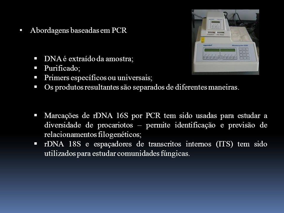 Abordagens baseadas em PCR