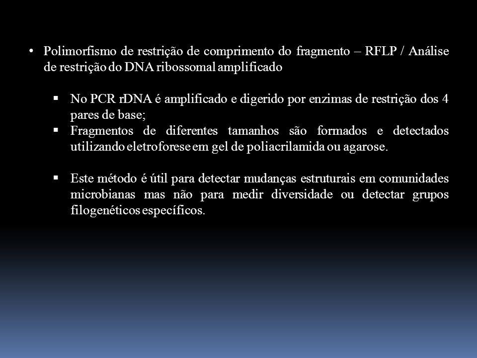 Polimorfismo de restrição de comprimento do fragmento – RFLP / Análise de restrição do DNA ribossomal amplificado