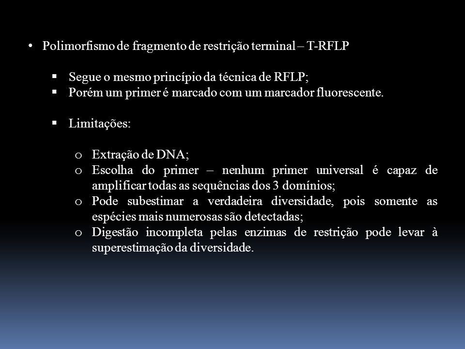 Polimorfismo de fragmento de restrição terminal – T-RFLP