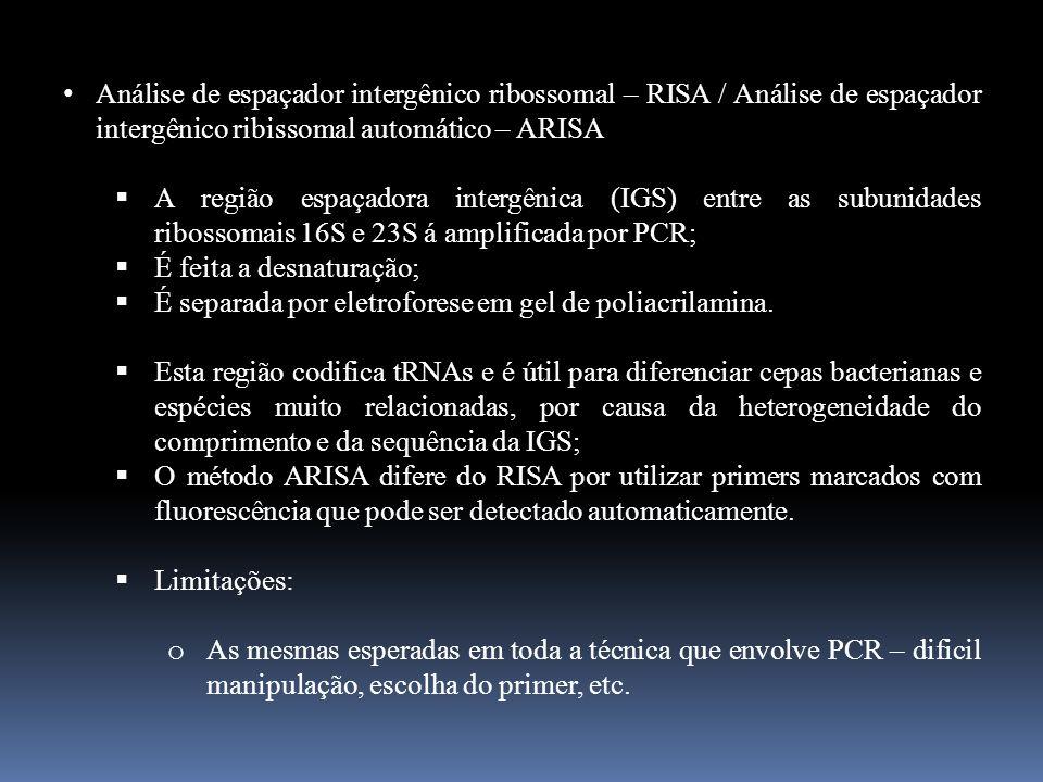 Análise de espaçador intergênico ribossomal – RISA / Análise de espaçador intergênico ribissomal automático – ARISA