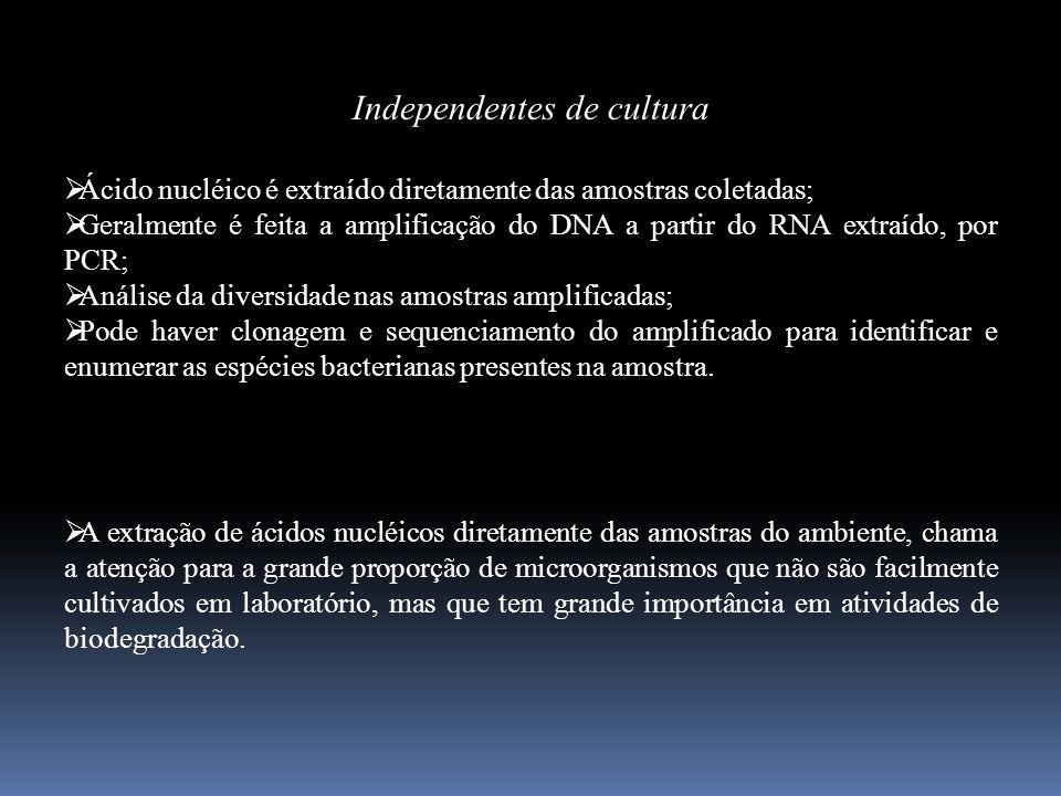 Independentes de cultura