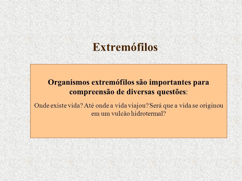 Extremófilos Organismos extremófilos são importantes para compreensão de diversas questões: