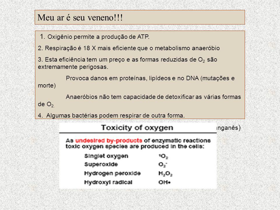 Meu ar é seu veneno!!! 1. Oxigênio permite a produção de ATP.