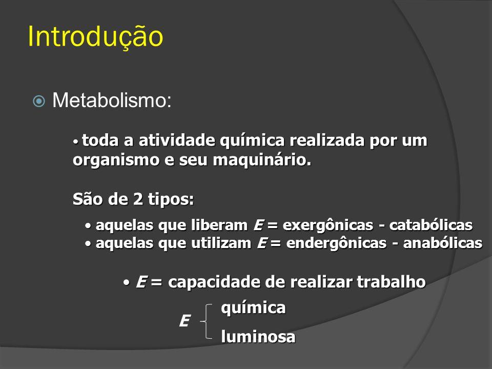 Introdução Metabolismo: São de 2 tipos: