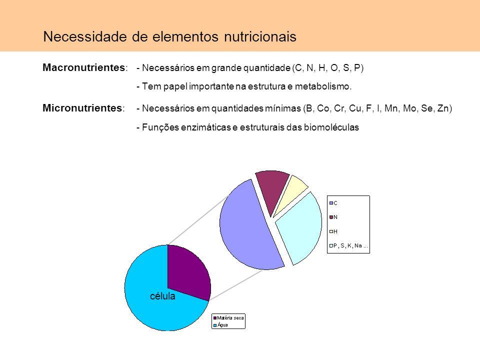 Necessidade de elementos nutricionais