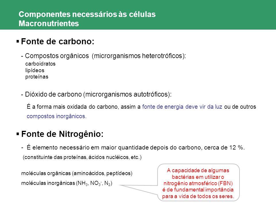 Componentes necessários às células Macronutrientes