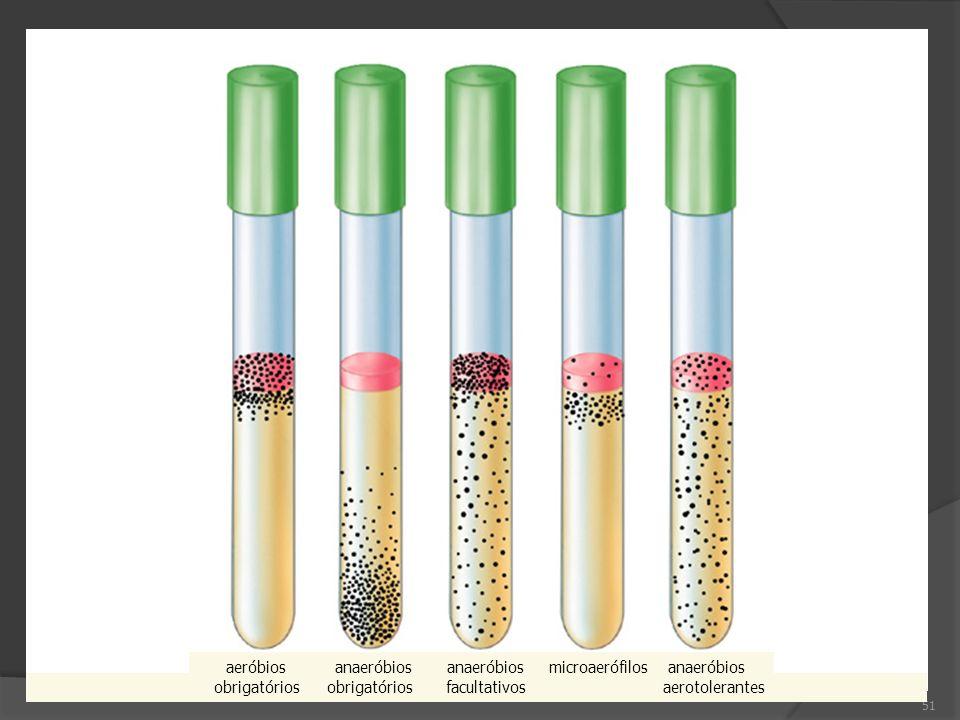 aeróbios anaeróbios anaeróbios microaerófilos anaeróbios