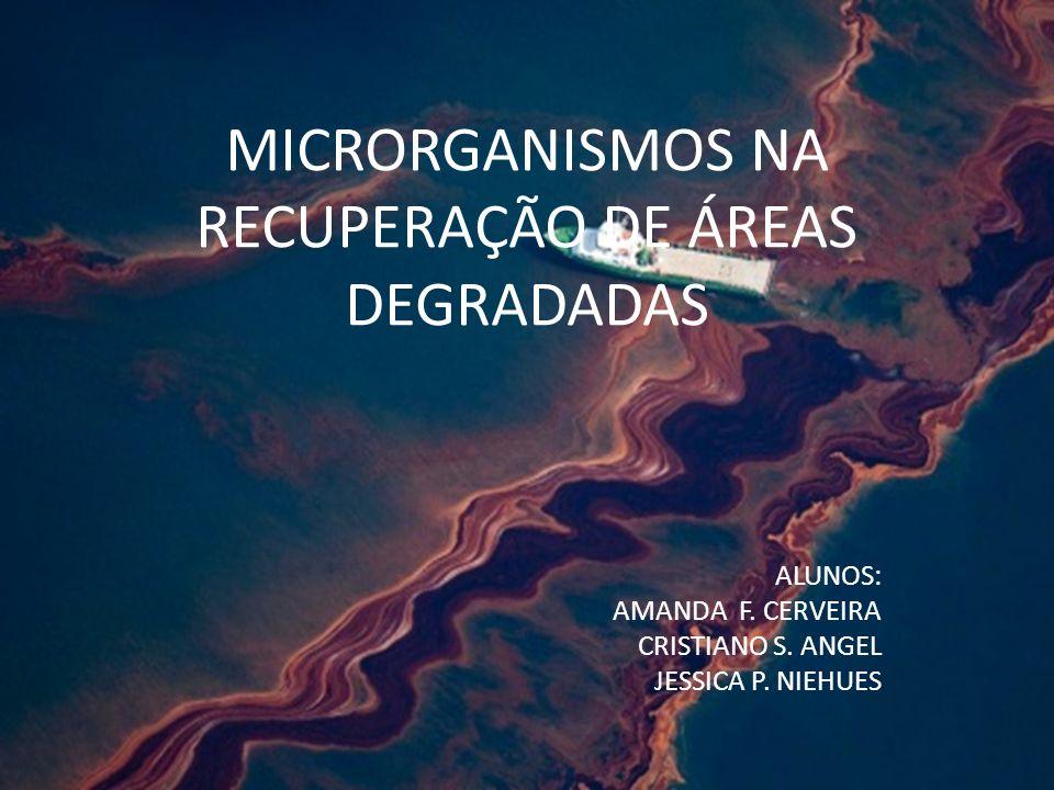 MICRORGANISMOS NA RECUPERAÇÃO DE ÁREAS DEGRADADAS