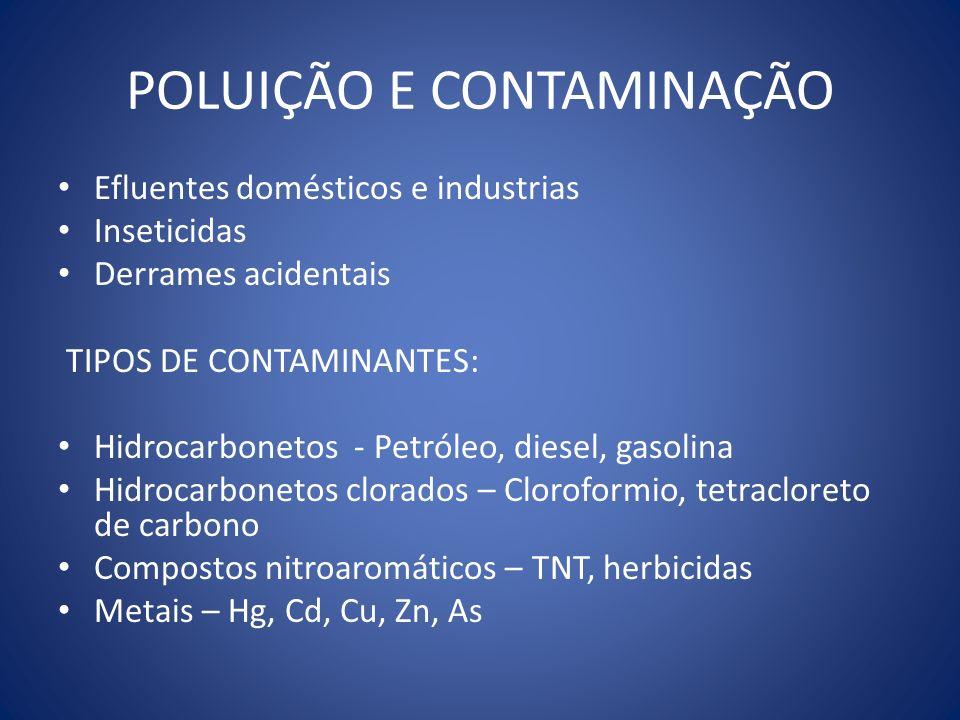 POLUIÇÃO E CONTAMINAÇÃO