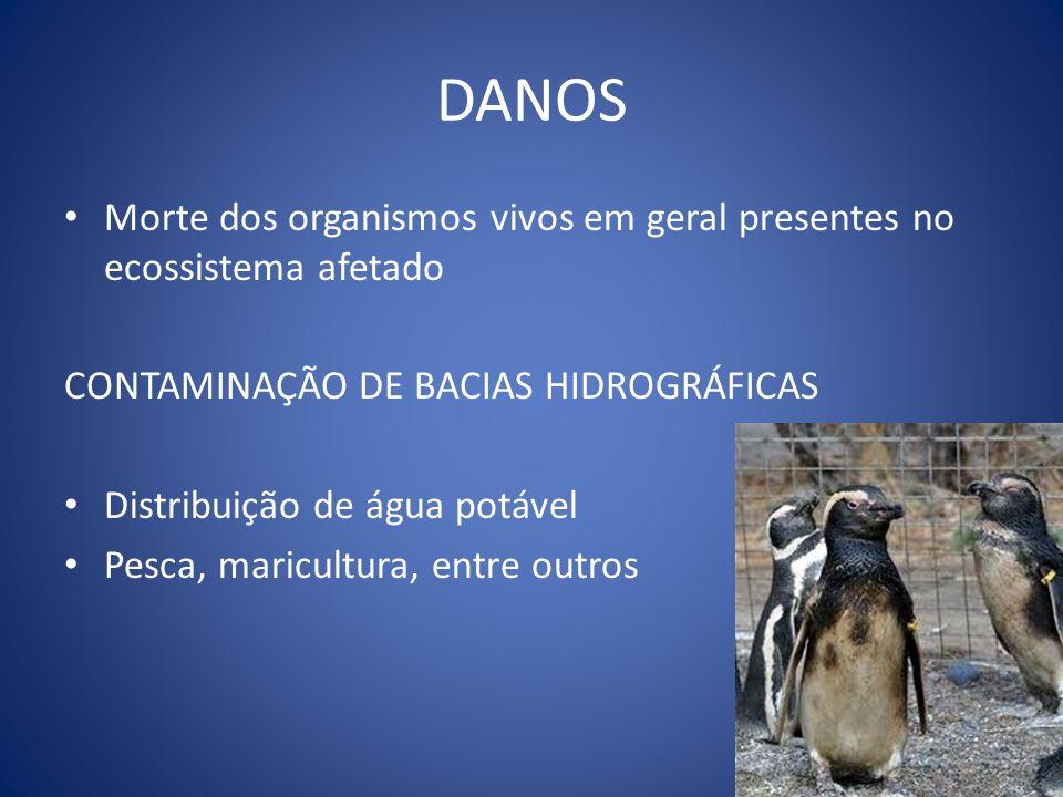 DANOS Morte dos organismos vivos em geral presentes no ecossistema afetado. CONTAMINAÇÃO DE BACIAS HIDROGRÁFICAS.