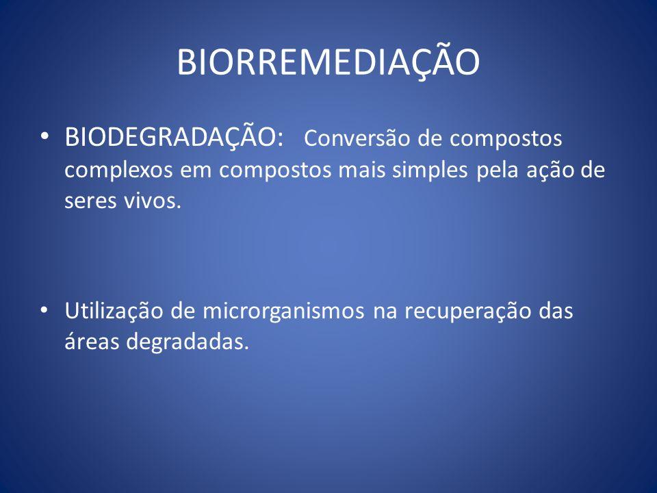 BIORREMEDIAÇÃO BIODEGRADAÇÃO: Conversão de compostos complexos em compostos mais simples pela ação de seres vivos.