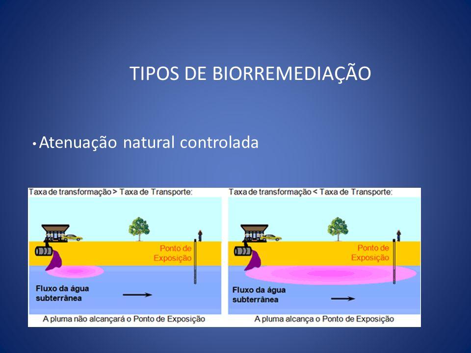 TIPOS DE BIORREMEDIAÇÃO