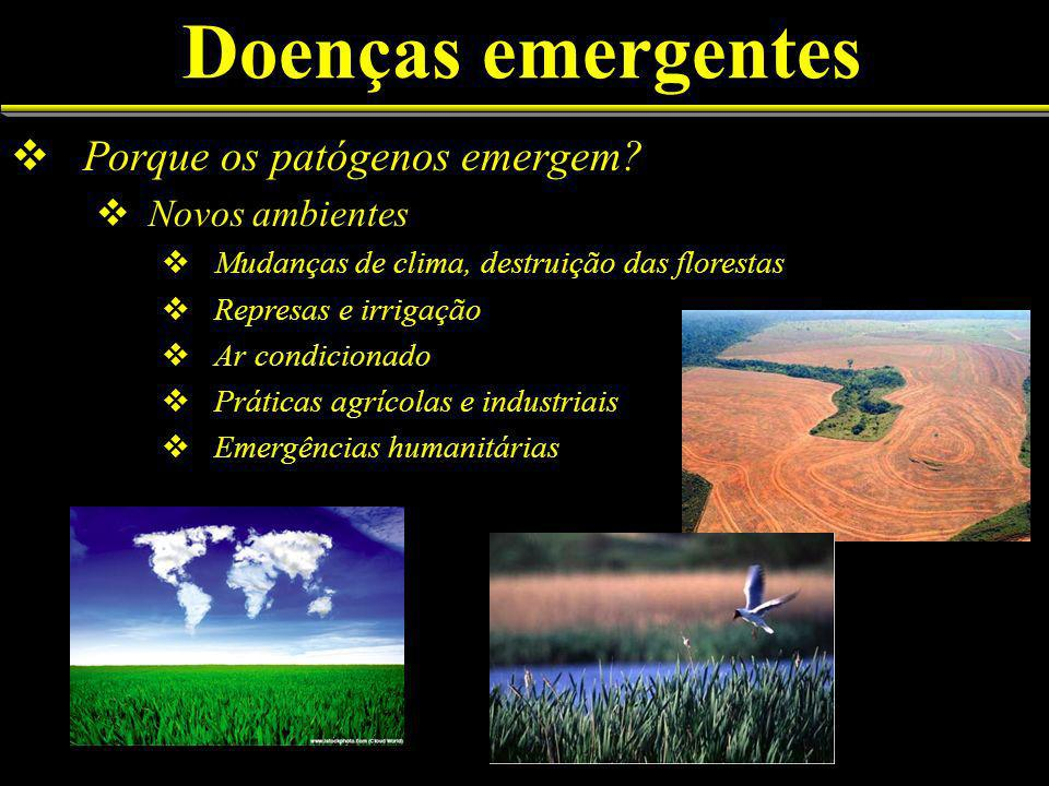 Doenças emergentes Porque os patógenos emergem Novos ambientes
