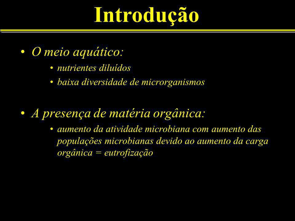 Introdução O meio aquático: A presença de matéria orgânica: