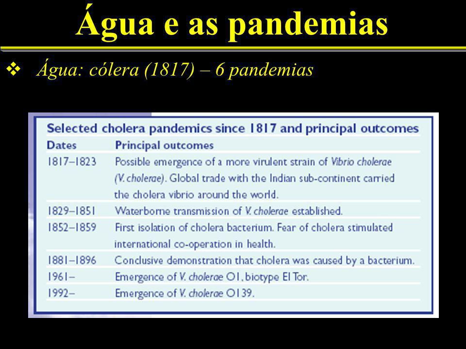 Água e as pandemias Água: cólera (1817) – 6 pandemias