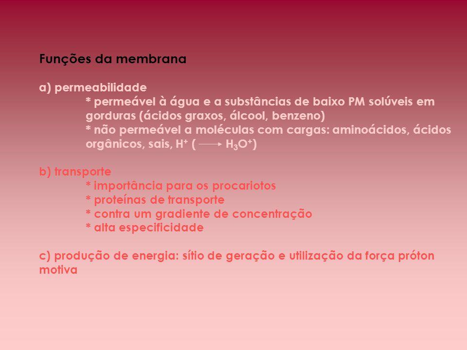 Funções da membrana a) permeabilidade