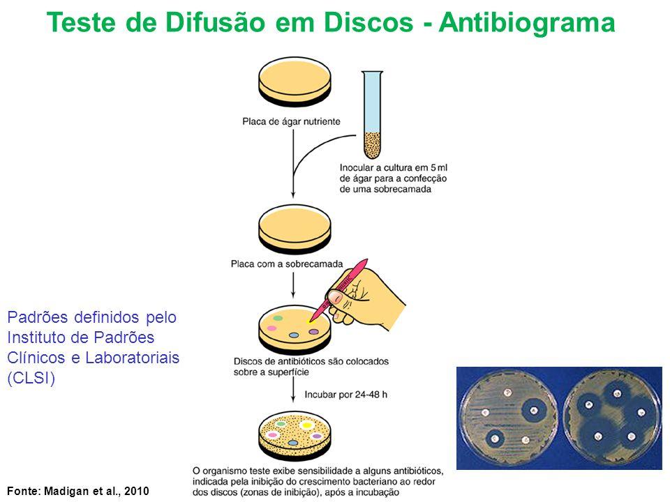 Teste de Difusão em Discos - Antibiograma