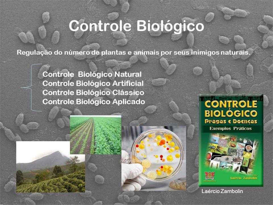 Controle Biológico Controle Biológico Natural